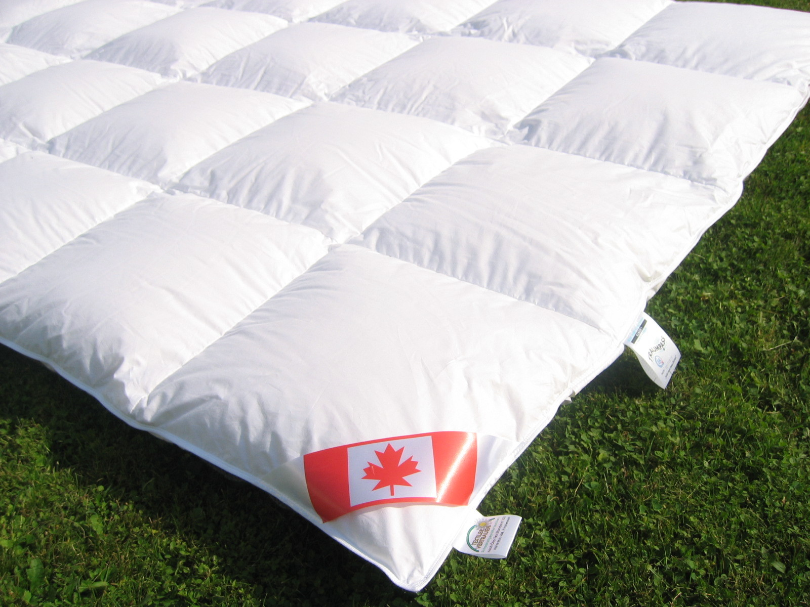 Down Filled Duvets And Neck Pillows By Betten Frank
